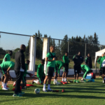 Super Eagles will end up as Training Materials in Russia if… – Udeze
