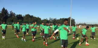 Nigeria, Super Eagles, FIFA World Cup