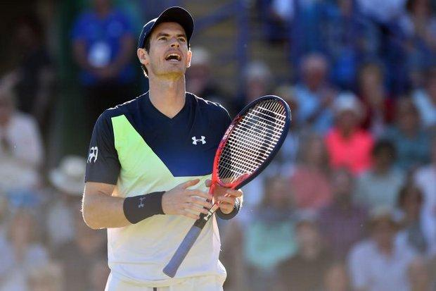 I'm not fit enough! Andy Murray withdraws from Wimbledon Open