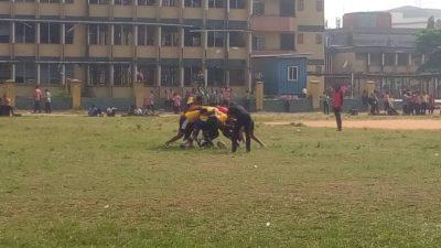 Nigeria Rugby