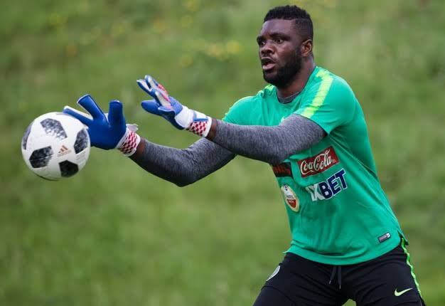 2019 AFCON: Akpeyi to be named Eagles No 1, as Rohr ready to drop Uzoho