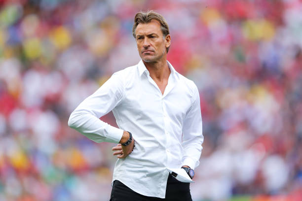 Renard not interested in working in Africa after quitting Morocco job