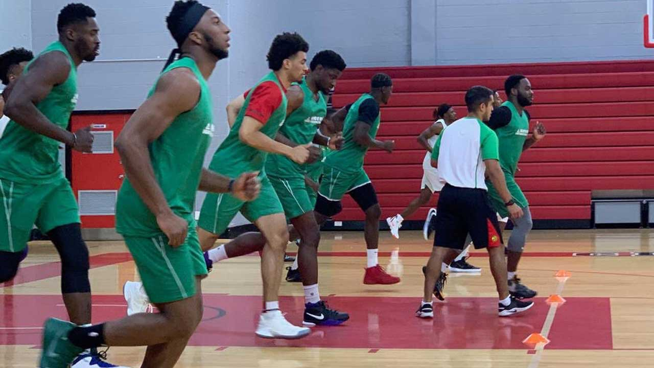 Abdulrahman cautions against over reliance on Foreign based basketball players