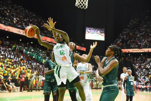 D'Tigress lands in pot three of 2019 Olympics Games qualifiers