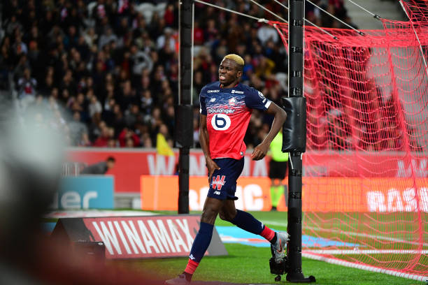 Osimhen's Injury Could Be A Big Problem – Lille Manager Galtier