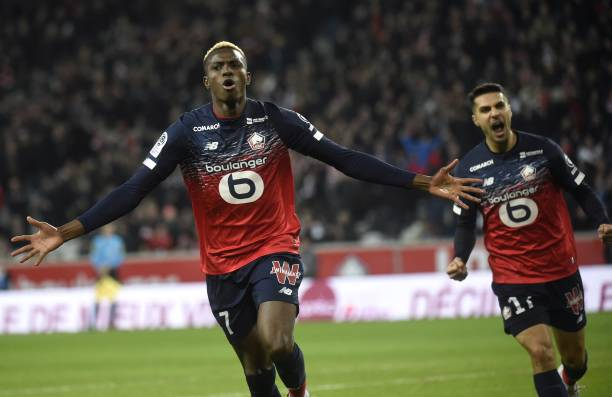 Lille to demand Club record fee for Osimhen