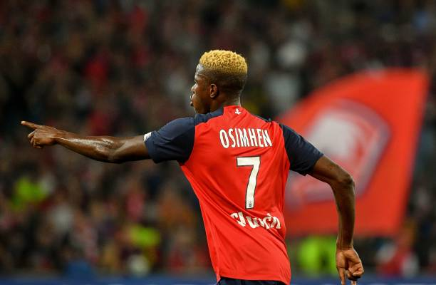 Lille confirms big offers for Osimhen